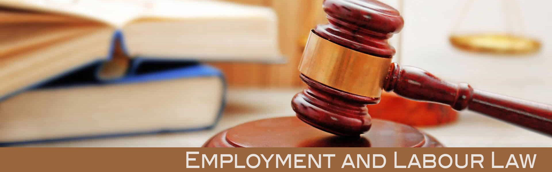 employment and labour law south africa